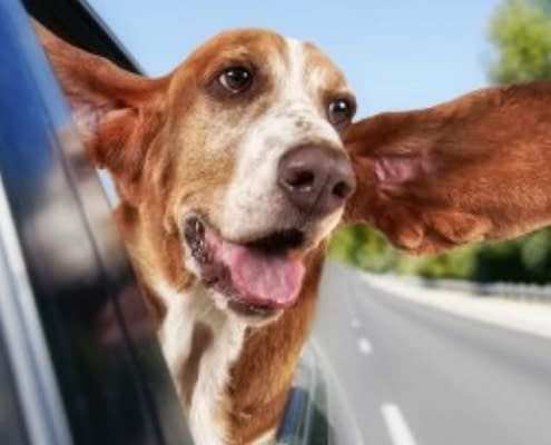 Is your car air conditioning broken?