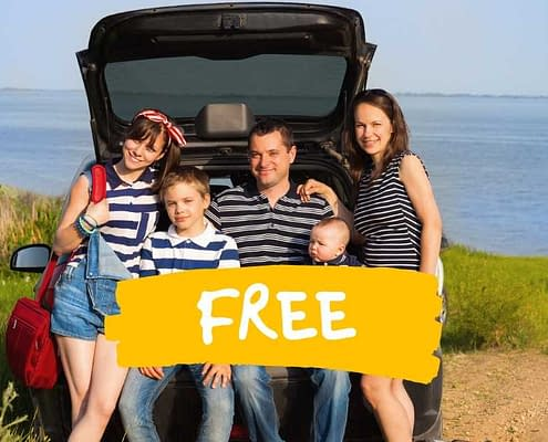 free summer car checks
